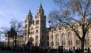 Natural-History-Museum-London-11